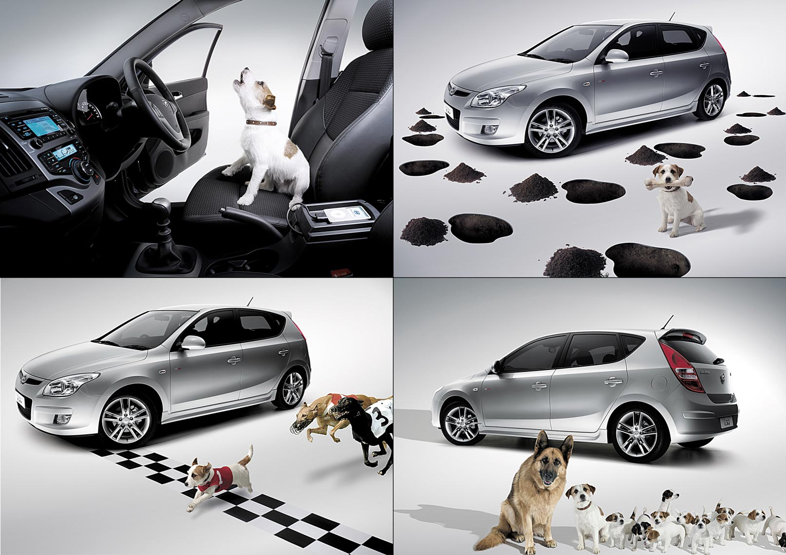 Hyundai-Dog-series.jpg